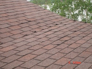 Curling Shingles on Roof